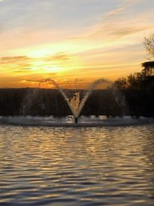 Madrid Quiz: fountain in front of the Debod Temple, in West Park, at sun set.
